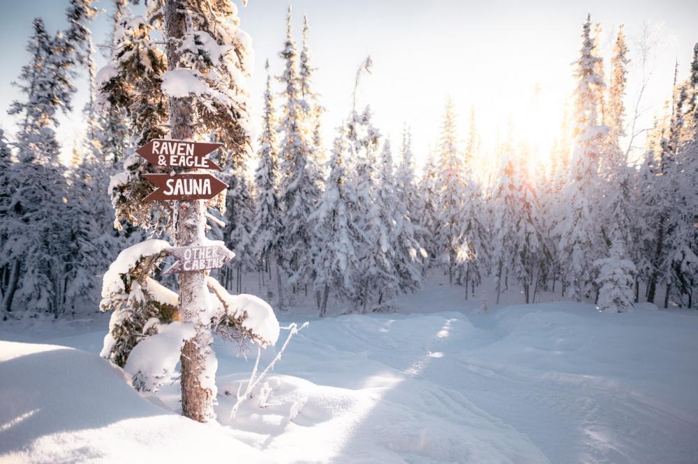 Winter Signage - Martina Gebarovska