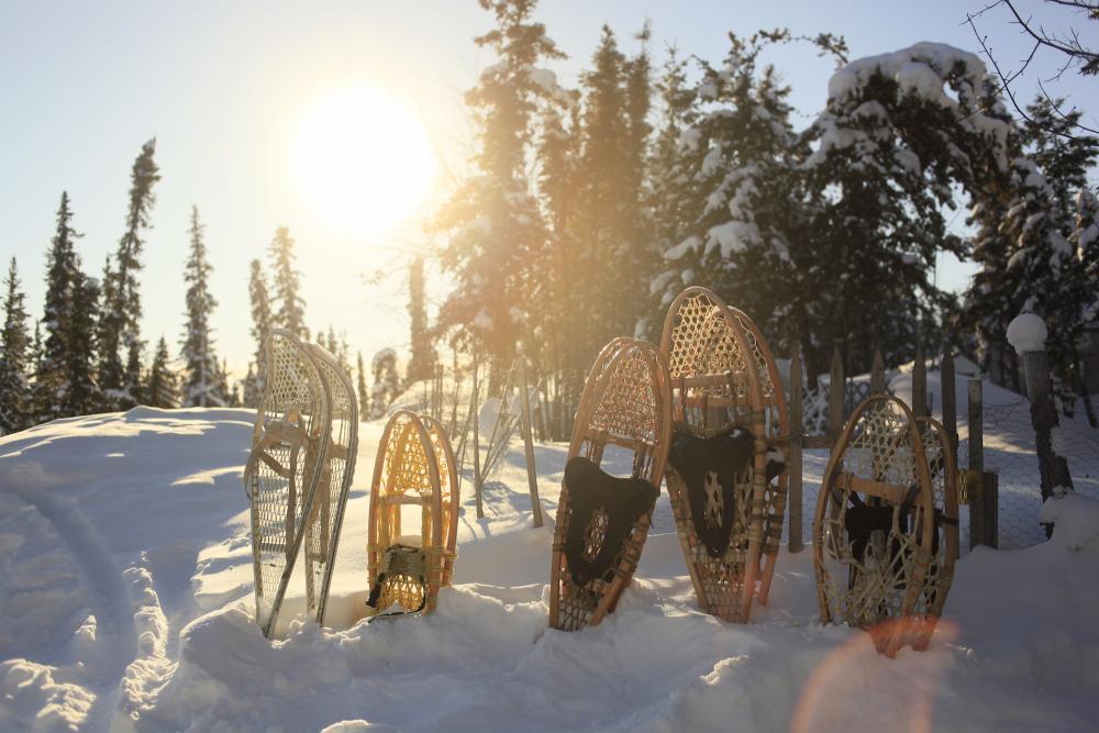 Snowshoes - Rahela Jagric